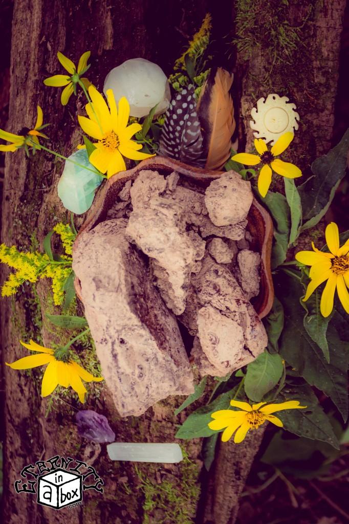 Ceremonial Cacao Paste *Organic & Unhybridized*