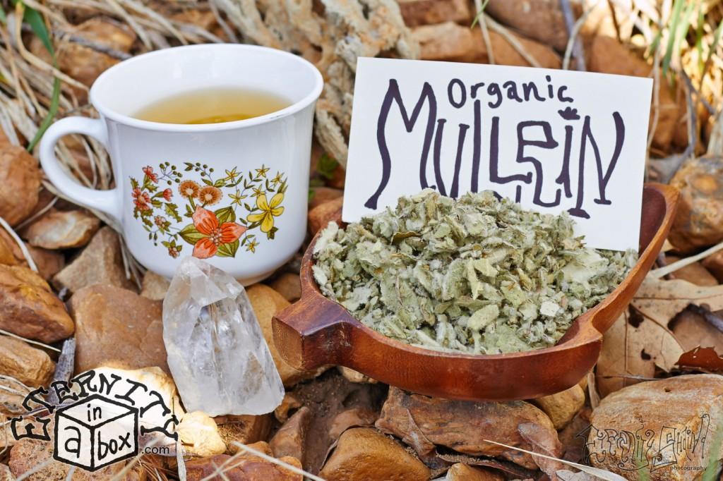 Mullein Leaf *Organic*