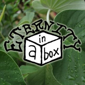 Eternity in a Box Gift Certificates