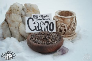 Cacao Nibs Unfermented *Organic and Raw*
