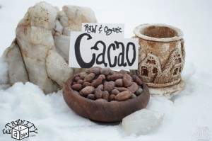 Cacao Beans Whole *Organic and Raw*