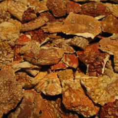 Amanita Muscaria Grade A+ Broken/Fragmented Washington State Caps 'Fly Agaric'