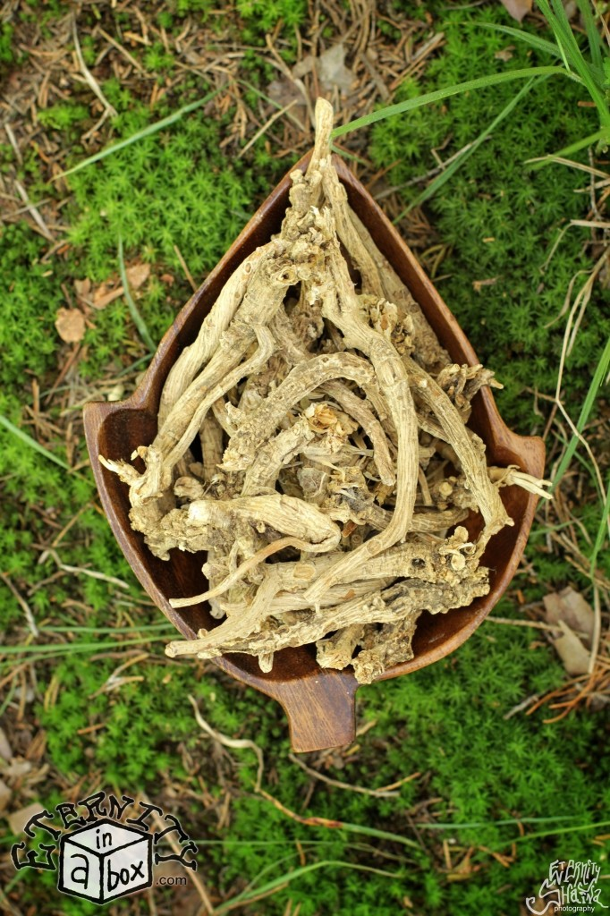 Silene Capensis Root AFRICAN DREAM HERB