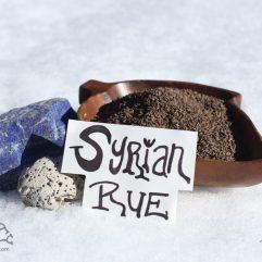Syrian Rue Seeds PEGANUM HARMALA *Organic*