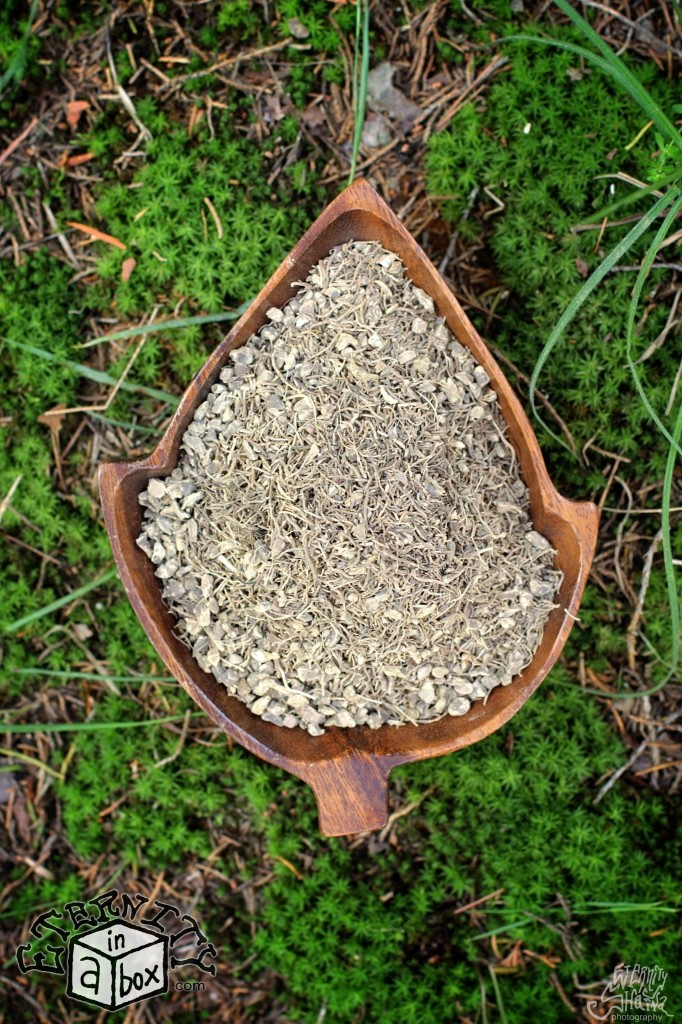 Blue Cohosh Root *Organic*